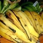 10+ Proven Health Benefits of Eating Ripe or Unripe Plantains