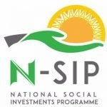How to Apply for NSIP Startup Nigeria Program #NPowerNG