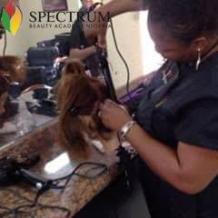 Spectrum beauty academy cosmetology school Lagos
